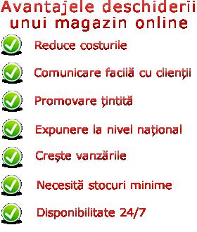 Cum sa iti faci propriul Magazin Online